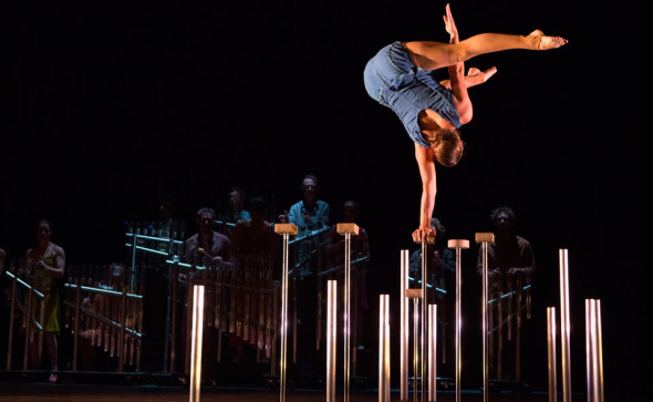 cirque-plume