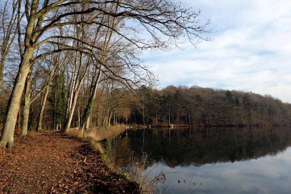 paysage-automne