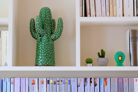 collection-cactus