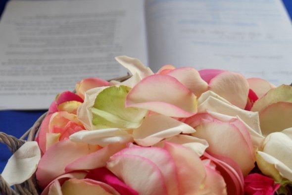 petales-roses